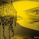 『サウダーヂ』ロカルノ国際映画祭 インターナショナル・コンペティション部門に正式出品